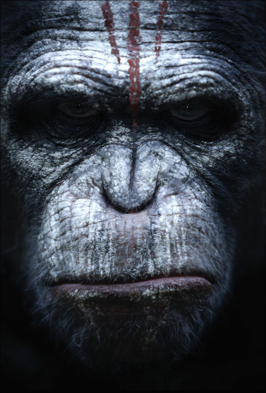 hr_dawn_of_the_planet_of_the_apes_5
